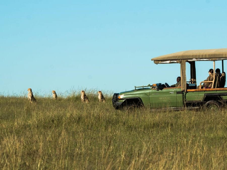 Top Luxury Safari Lodges and Camps in Kenya Parks and Reserves